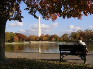 washington-d-c-1129758-m